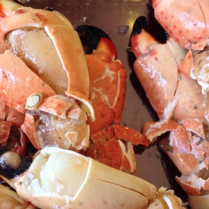 Joe's Stone Crab_Stone Crabs